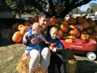 For years the Columbus Day tradition has been: get the kids flu shots, Wendy's for lunch and then pick out pumpkins. This year (the year I ran out of my own kids) thankfully my grandkids were here to have lunch at Wendy's and go pumpkin picking. No flu shots on the Grandma watch!