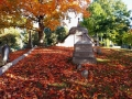 Gotta love a good old cemetery. I loved the carpet of leaves on the ground.