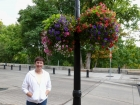 Beautiful flowers on the River Walk in Corvallis.